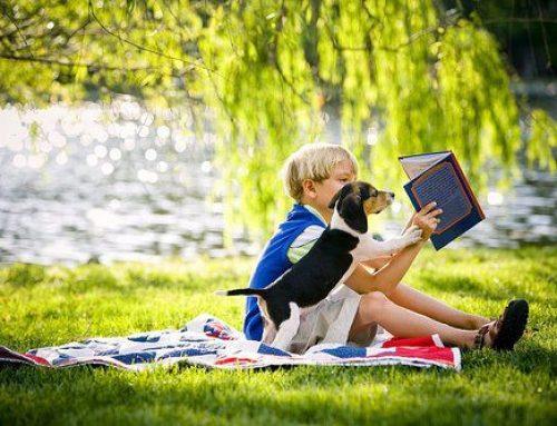 So entdecken Kinder Freude am Lesen